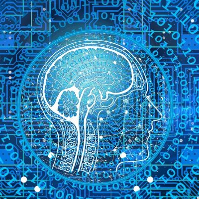 Об интеллекте мозга, души и тела